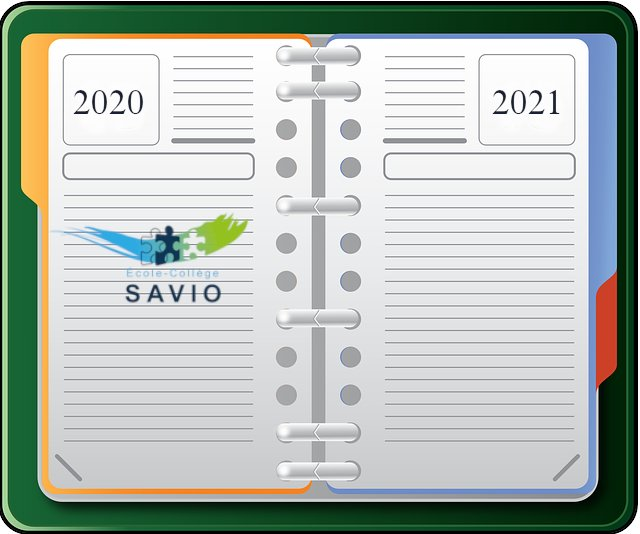 agenda Savio 2020